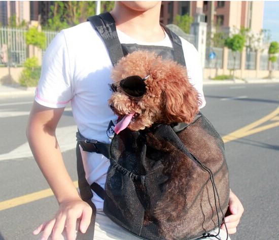 cat-and-dog-bag