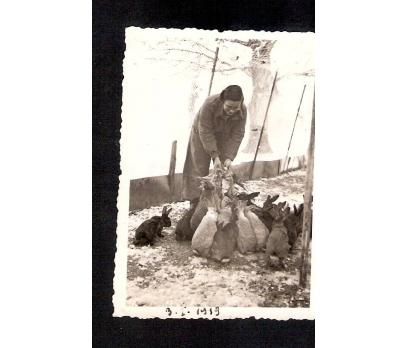 D&K-TAVŞANLARA YİYECEK VEREN BAYAN 1939 FOTOGRAF