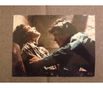 The Evil Dead Bruce Campbell SİNEMA Lobi Kartı