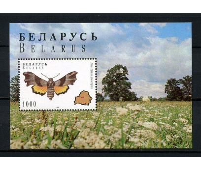BELARUS ** 1996 KELEBEK  BLOK (060914)