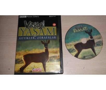 GEYİKLER ZÜRAFALAR (DVD)