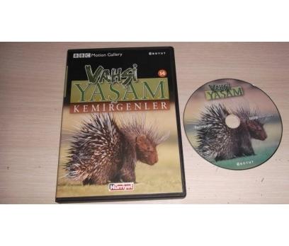 KEMİRGENLER (DVD)