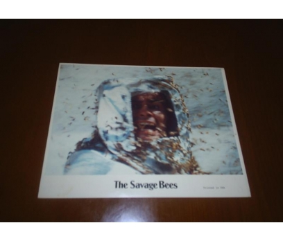 The Savage Bees Ben Johnson, Michael Parks Lobi