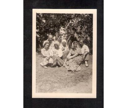 D&K- GİRESUN FINDIK BAHÇESİ (3) FOTOĞRAF
