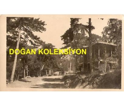D&K-YOZGAT ÇAMLIK 1939-KARTPOSTAL