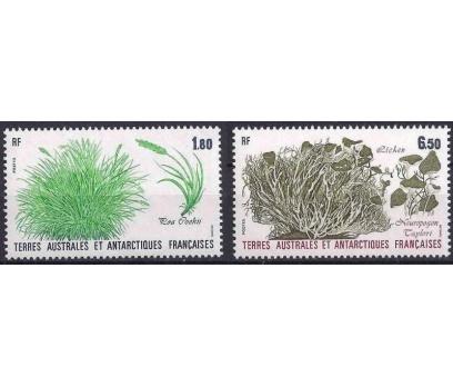 1987 Fransa Antartik Bölgesi Bitkiler Damgasız**