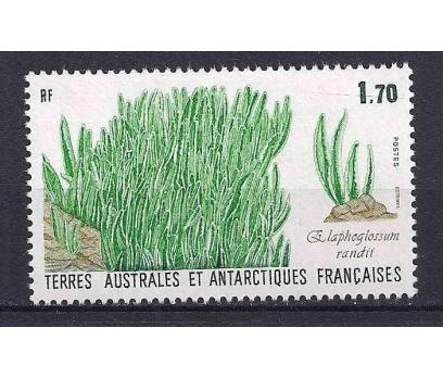 1988 Fransa Antartik Bölgesi Flora Damgasız**