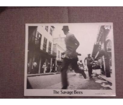 The Savage Bees Ben Johnson, Michael Parks Lobi