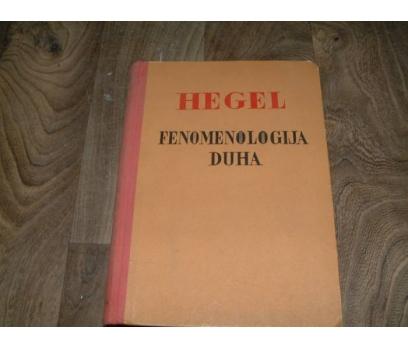 İLKS&FENOMENNOLOGIJA DUHA-HEGEL