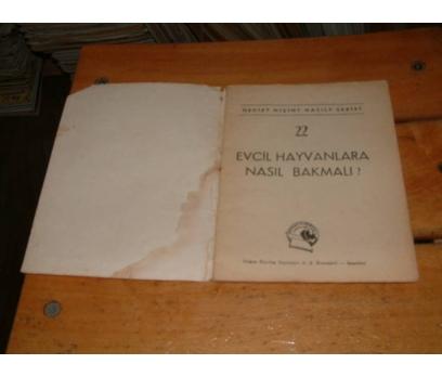 İLKSAHAF&EVCİL HAYVANLARA NASIL BAKILMALI