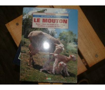 LE MOUTON-DANIEL PEYRAUD-1995-KOYUNLAR