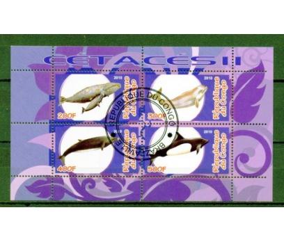 KONGO  İGD YUNUSLAR BLOK SÜPER (100315)