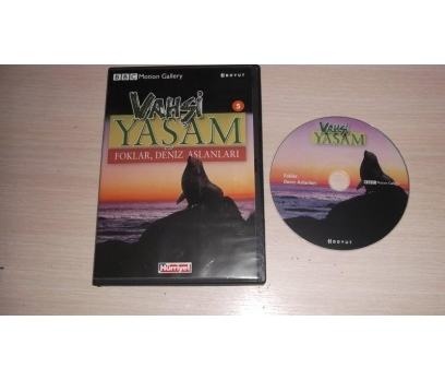 FOKLAR DENİZ ASLANLARI (DVD)