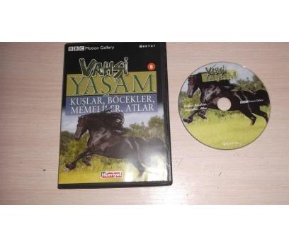 KUŞLAR BÖCEKLER MEMELİLER ATLAR (DVD)