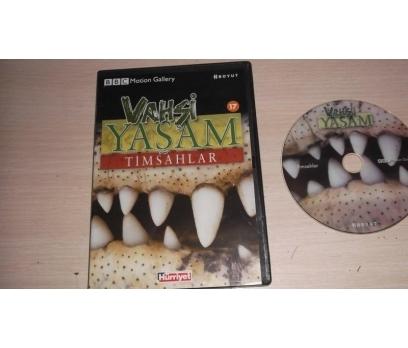 TİMSAHLAR (DVD)