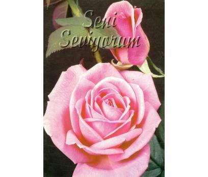 KARTPOSTAL KOLEKSİYON ANTİKA 10113011019