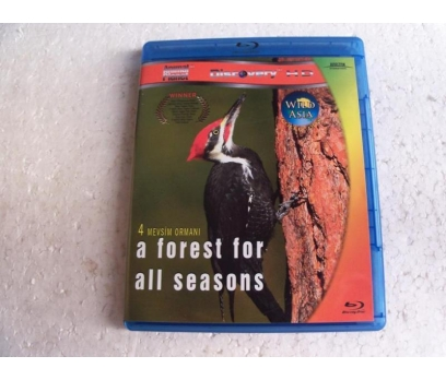 4 MEVSİM ORMANI a forest for all seasons BLU-RAY